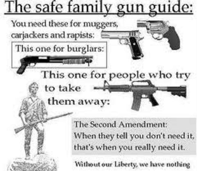 The safe Family gun guide 1